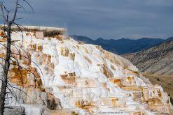 USA-Yellowstone-Mammoth-Hot-Springs-sinterterrassen-Fotreise