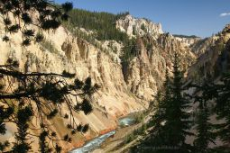 Canyon-Village-Yellowstone-NP-2